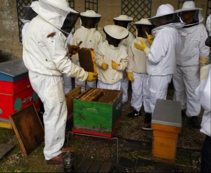 Découvrir ou redécouvrir le rucher à l'occasion du 10ème anniversaire