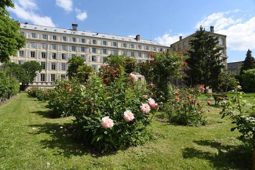 jardin roseraie